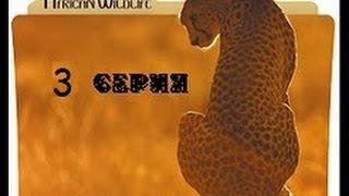 Удивительная природа Африки 3 серия