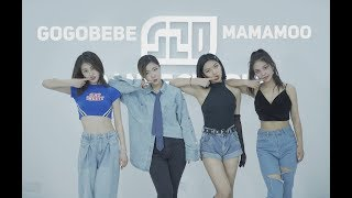 [1theK Dance Cover Contest] BTSZDgogobebe()-MAMAMOO() Dance Cover Covered by BTSZD