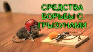 ОБЗОР/ЭФФЕКТИВНЫЙ/СПОСОБ И СРЕДСТВА БОРЬБЫ С МЫШАМИ И КРЫСАМИ!