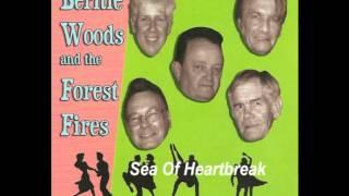 Bernie Woods & The Forest Fires  Sea Of Heartbreak