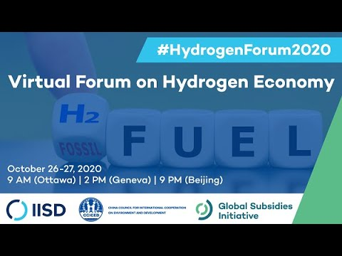 Virtual Forum on Hydrogen Economy   Present prospects for production and industrial use of hydrogen