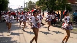 Chicas bailando Saya -3 (Canción: Zambito (grupo Yawar))