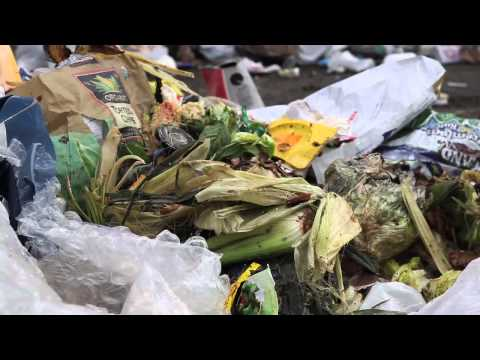 Food Waste & Climate Change: Seattle Cracks Down On Composting   IN Close