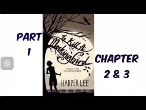To Kill A Mockingbird By Harper Lee Part 1 Chapter 2 & 3 Audiobook Read Aloud
