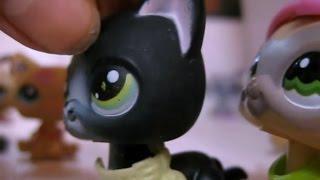 Littlest Pet Shop(LPS)Ты больше не одна...1 сезон 1 серия