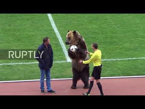 Football match kicks off with special GRIZZLY guest