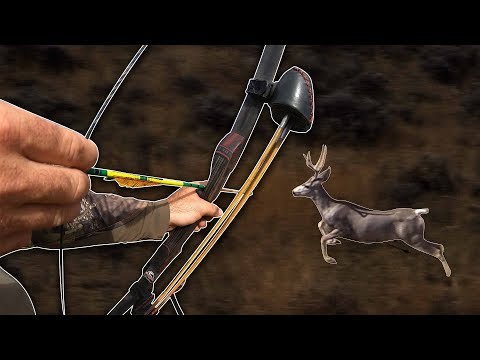 Self-Filmed Traditional Archery Spot And Stalk | Bowhunt Or Die Season10 Episode 36
