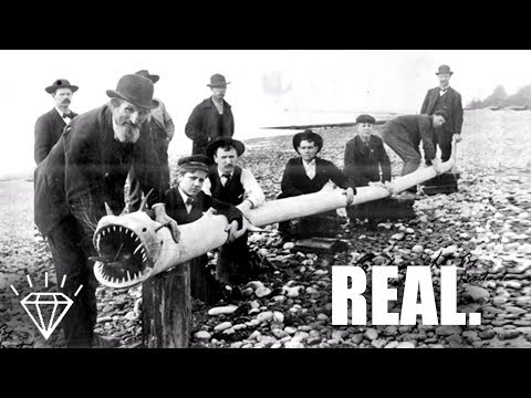 100% REAL Photos That Can't Be Explained! - Unsolved Mysteries