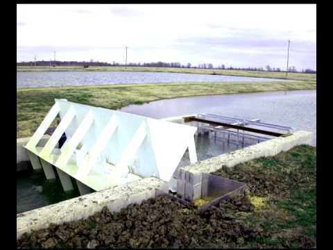 Advanced Aquaculture Systems Part 3:  Split Ponds