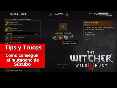 The Witcher III: Wild Hunt   Tips y Trucos   Como conseguir el Mutágeno de Súcubo