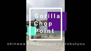 """瀬底島近くの海岸線に""""ゴリラチョップ""""と言われる岩があります。その周..."""