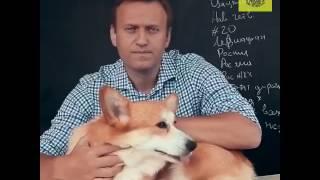 Навальный это не Гитлер, это хуже. Он Ганди! Фу!