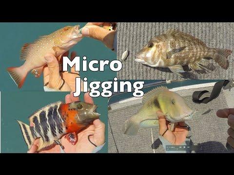 Micro Jigging Technique Slow Jigging Reef Fish Australia Andys Fishing Video EP278