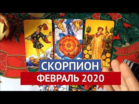 ♏️ СКОРПИОН. ФЕВРАЛЬ 2020. ТАРО ПРОГНОЗ ФЕВРАЛЬ 2020. ЛЕОНИД СЕРЕДА