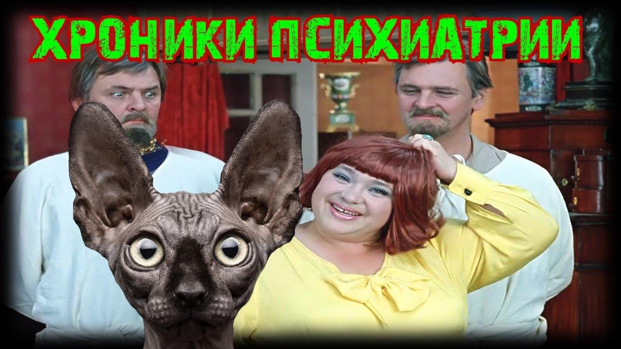 Кот Костян / Сводки с фронтОв от 03.08.2020