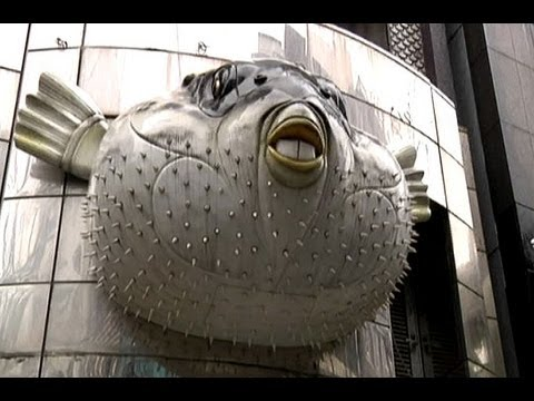 Japan To Relax Restrictions On Poisenous Fugu Fish