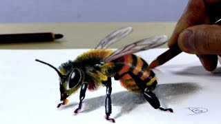 Trick Art on Paper, Painting 3D Bee