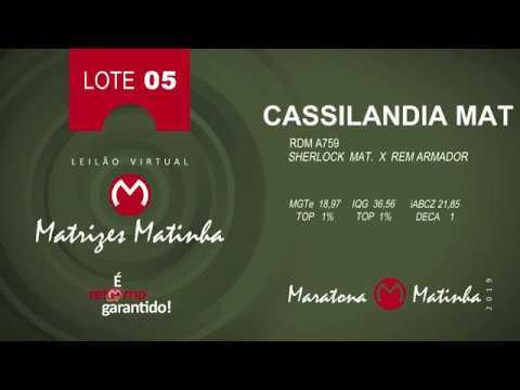 LOTE 05 Matrizes Matinha 2019