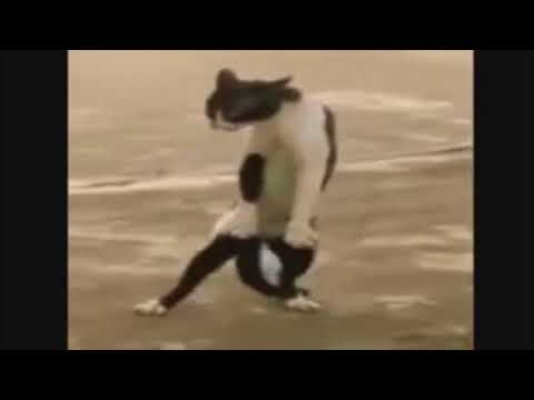 VIDEO PRA TROLLAR SEUS AMIGOS// GEMIDAO DO ZAP
