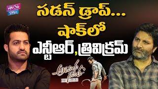 Sudden Drop Aravinda Sametha Movie Collections | Jr NTR | Trivikram | YOYO Cine Talkies