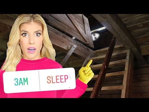 24 Hours in an ABANDONED Attic above my HOUSE! (Game Master Has Fans Control My Life for a Day)