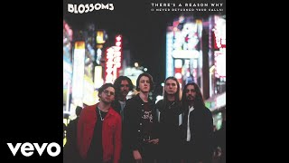 Blossoms - There's A Reason Why (I Never Returned Your Calls) [Audio]