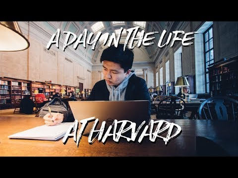 A Realistic College Day in the Life at Harvard
