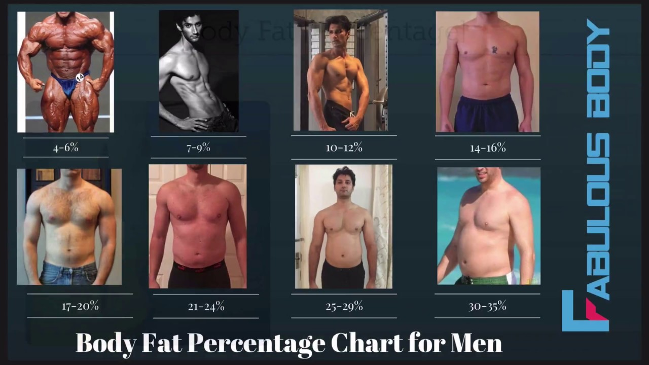 How do i know what body fat percentage i am