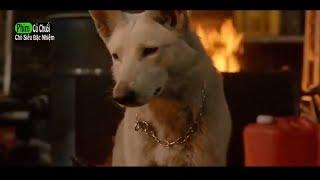 Phim Hay Mới Nhất 2018 l Chó Siêu Đặc Nhiệm - Phim Hành Động Mỹ Hay Nhất - Full TM l PHIM CỦ CHUỐI