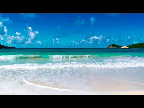 Bruit de la mer, Chant des Oiseaux - Détendre...