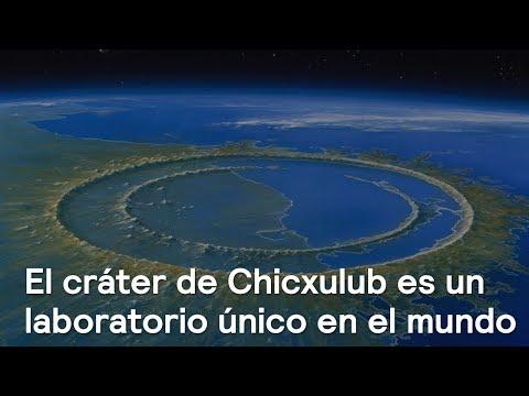 El cráter de Chicxulub, un laboratorio único en México y el mundo