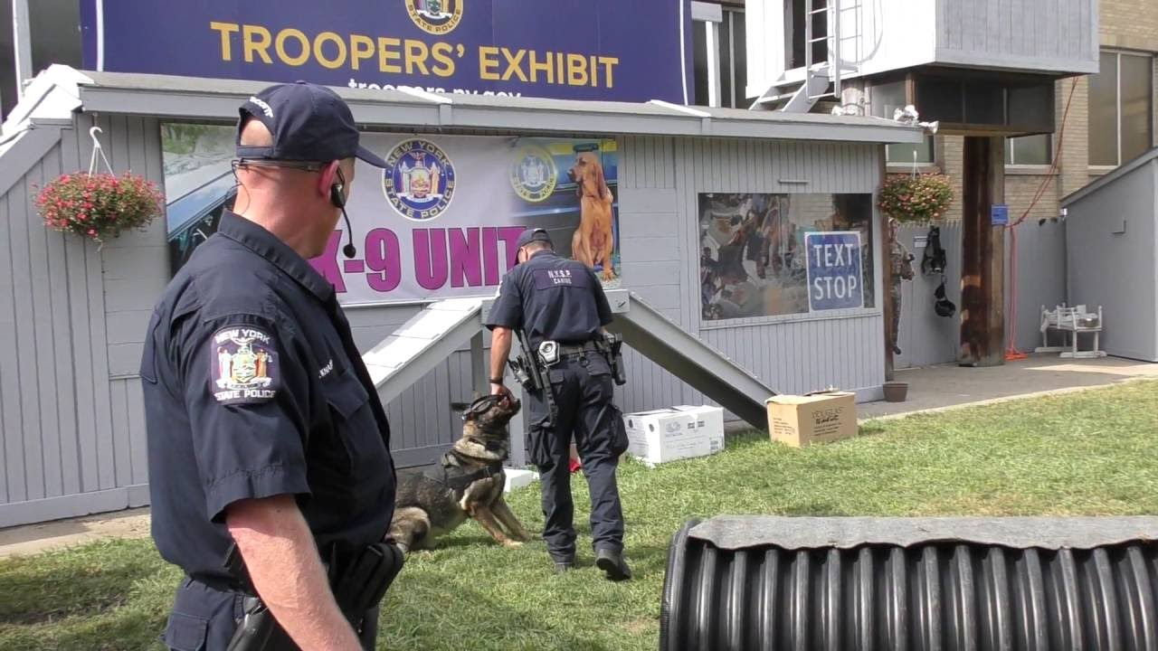 New York State Police Exhibit Canine/Bomb Disposal Unit Demonstration 2016 2