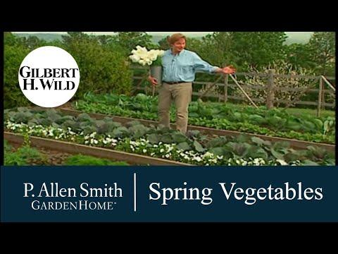 Growing a Spring Vegetable Garden | Garden Home (702)