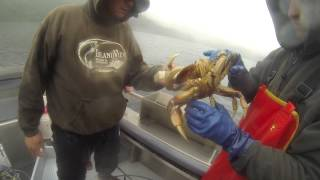 2013 Island View Resort And Charter,  Sitka, Alaska, Fishing, Salmon,