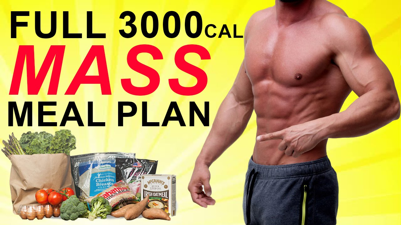 The Perfect Muscle Building Diet Plan For Men Print This Off Youtube