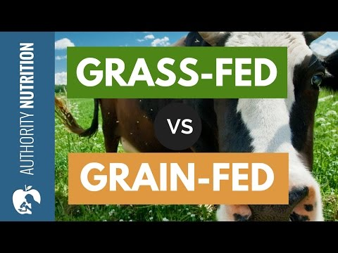 Is Grass-Fed Beef Really Healthier Than Grain-Fed?
