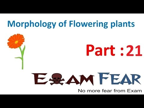 Biology Morphology of Flowering Plants part 21 (Flower Parts : Calyx, Corolla) CBSE class 11