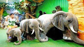 예준이의 공룡 박물관 곰인형 뮤지엄 어린이 놀이터 모래…