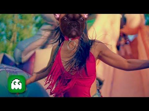 Olvidate! - Amor Para Un Rato - Cover Animales