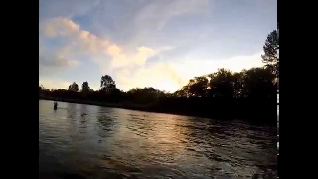 Ver 2 how to fish 24 inch pink salmon jig fishing in for Snohomish river fishing report