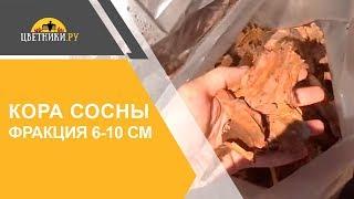 Кора сосны (средней фракции 6-10 см)(В этом ролике Вы увидите один из самых популярных видов мульчи - сосновой коры средней фракции 6-10 см. Кора..., 2015-09-12T14:55:33.000Z)
