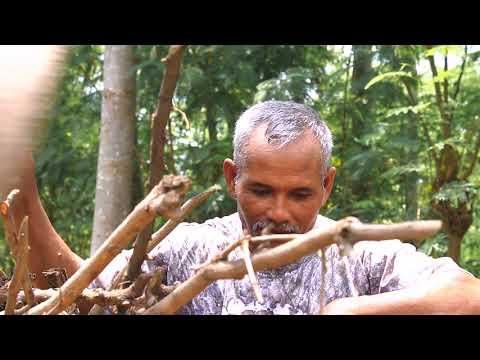 Film Pendek (short film) Dokumenter Fiksi