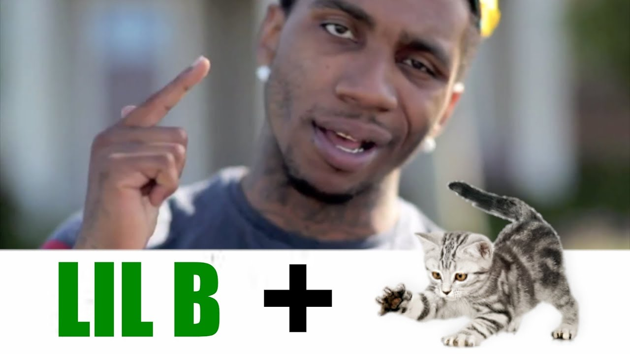 Download Lil B's Cat Keke Releases World's First Hip Hop Song by Cat