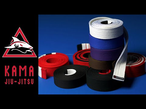 Gracie Jiu-Jitsu Belt Colors Explained: Strips, Bars, And Differences With Other BJJ