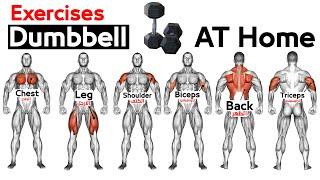 Full Body HOME Dumbbell WORKOUT squats chest triceps biceps back shoulder wrist Calves