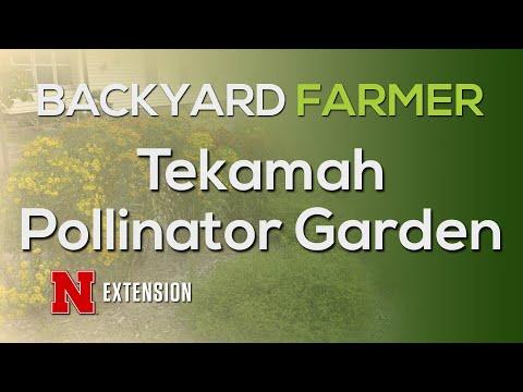 Tekamah Pollinator Garden
