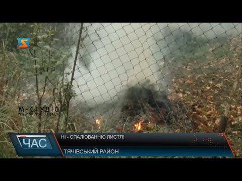 Телекомпанія М-студіо: Ні – спалюванню листя!