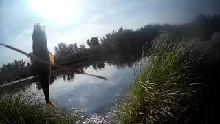 Рыбалка на озере в октябре окунь достал