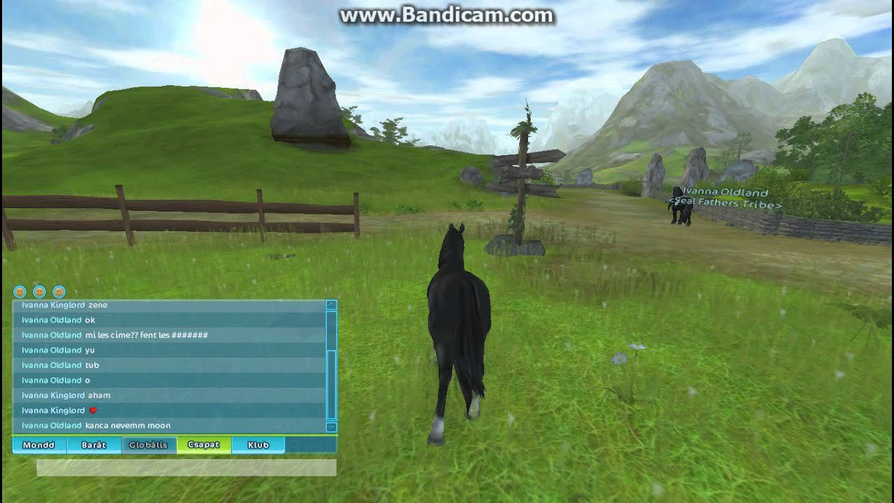 star stable how to catch wild horse
