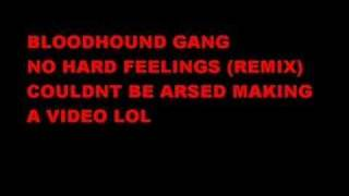 Bloodhound Gang No hard Feelings Remix